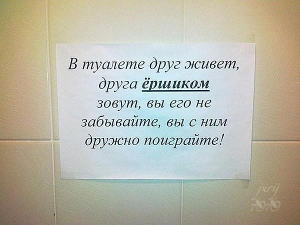 Рождения, картинка в туалет прикольные с надписями