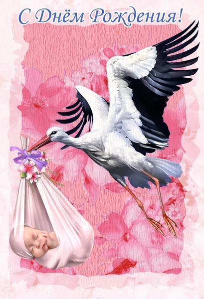 Открытки с аистом день рождения, поздравление рождением