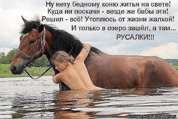 осень сколько может проскакать лошадь оплачивается
