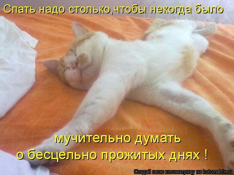 картинка смешная ты еще спишь иркутске уже