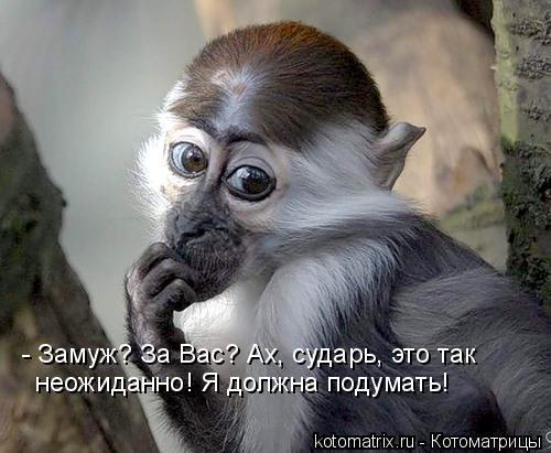 Картинка прикол мужчина должен быть не красивее обезьяны