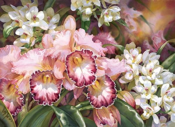 Самая красивая орхидея