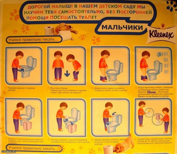 инструкция как ходить в туалет
