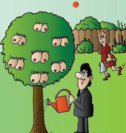 Надписями, смешные картинки посадка деревьев