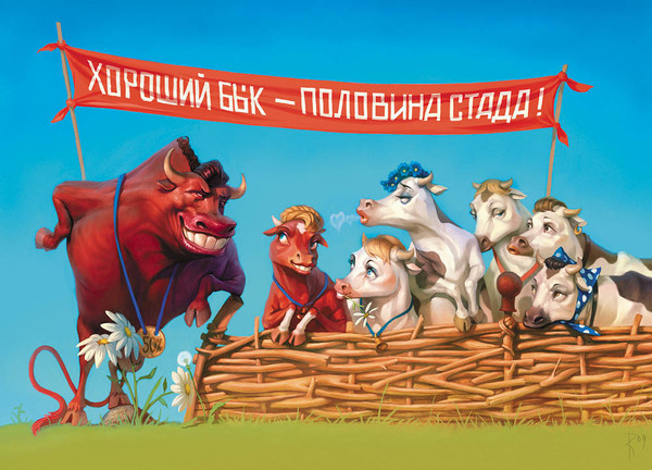 Открытки анимационные, открытки бык