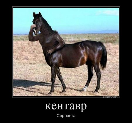 Демотиватор год лошади