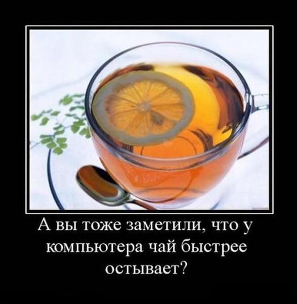 Отказ от чая и кофе отзывы