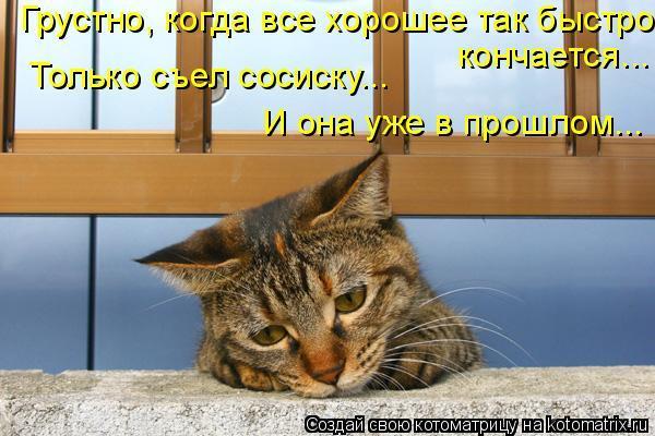 Кончается на кот