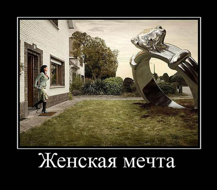 Картинки смешные про мечту, картинки