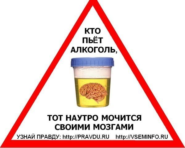 Ответы@Mail.Ru: из за алкоголя может болеть селезенка