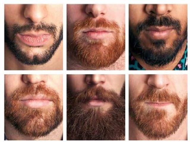 Самые длинные бороды в мире  Интересные факты