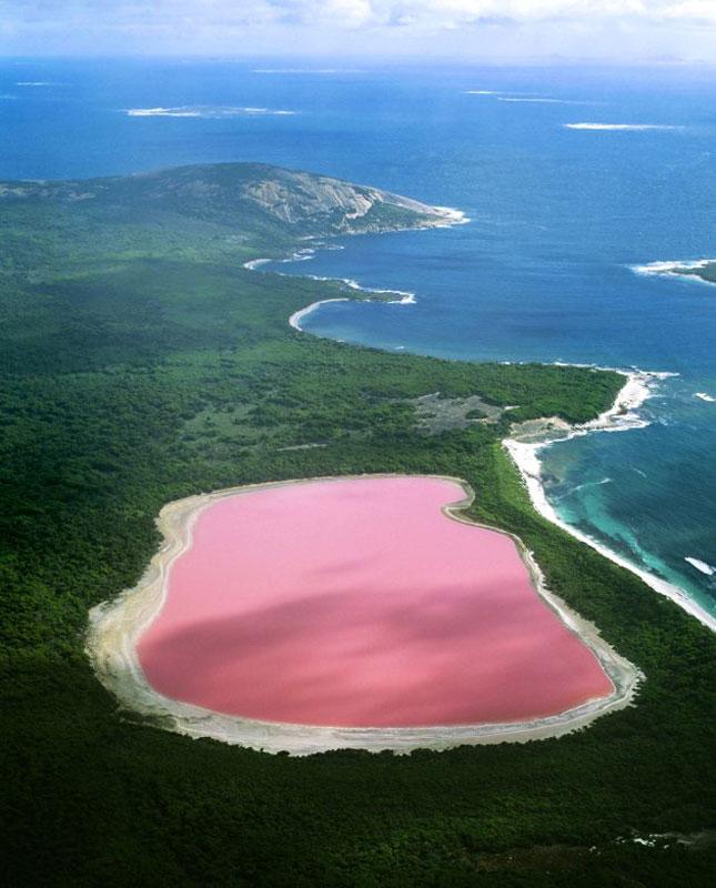 Ответы mail ru Реферат на тему самое необычное озеро География  В итоге ученые так и не дали ответа на то почему вода в озере Хиллер имеет ярко розовый цвет До сих пор остается неразгаданной загадка озера Хиллер