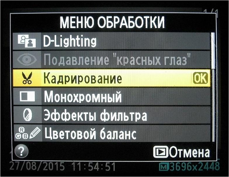 reshebnik-po-6-klass-po-russkomu-yaziku-ladizhenskaya-zeleniy-uchebnik