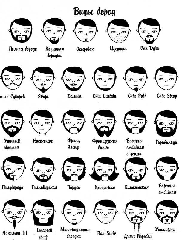 Формы и пропорции лица  Как определить форму лица