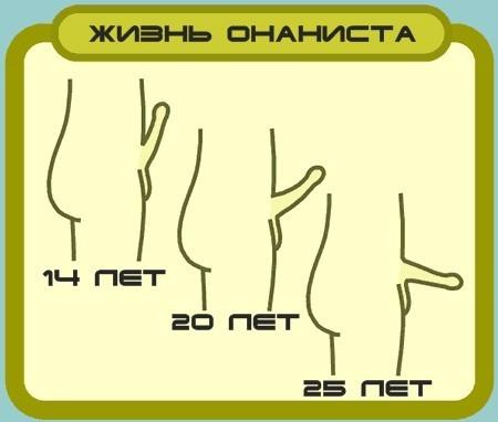 foto-erektsiya-penisa