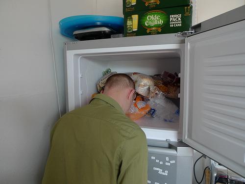 того, голова в холодильнике картинки очень хотим