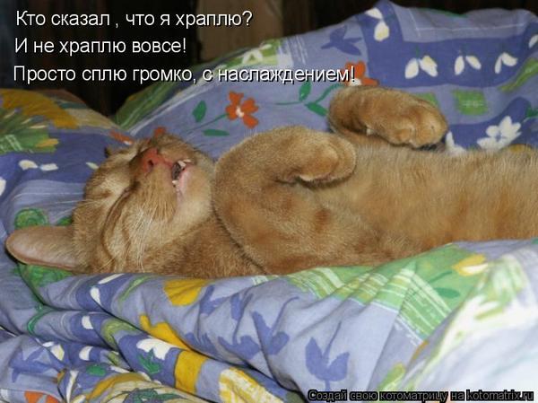 Что конкретно означает «кошачий» сон, зависит от нюансов.