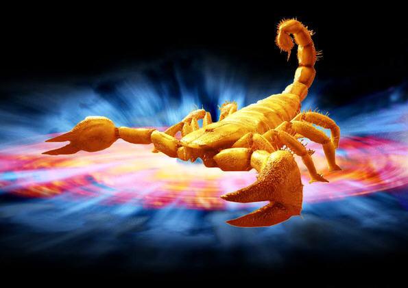 сексуальный прогноз для скорпионов на октябрь смотреть бесплатно 14