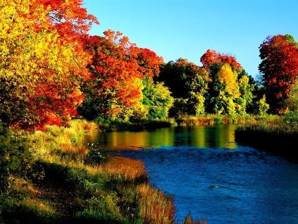 красивые фото сентября