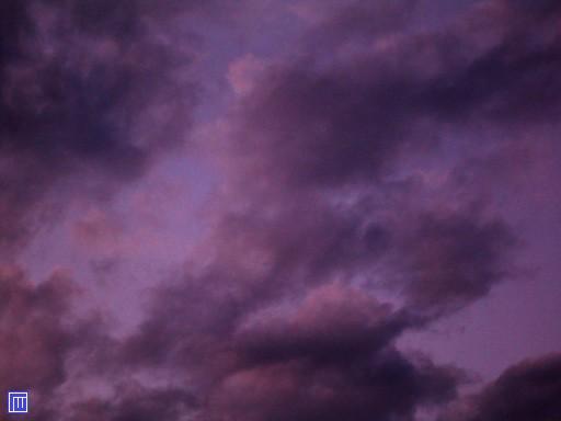 серобуромалиновый цвет в крапинку фото