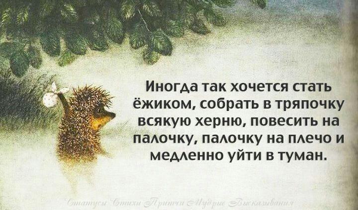 https://otvet.imgsmail.ru/download/91505578_30230a897edac7809b3e6f2738303fb2.jpg