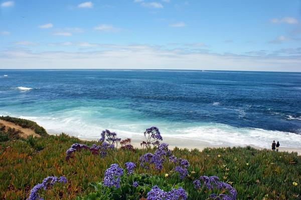 Купить земельный участок на берегу тихого океана