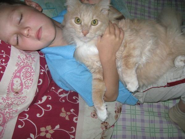 Пахнет ли моча кота после кастрации