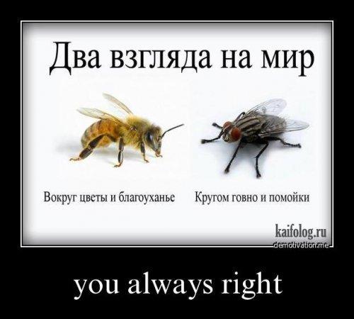 https://otvet.imgsmail.ru/download/96d3834802b5267d936dd5119d34ee28_i-196.jpg