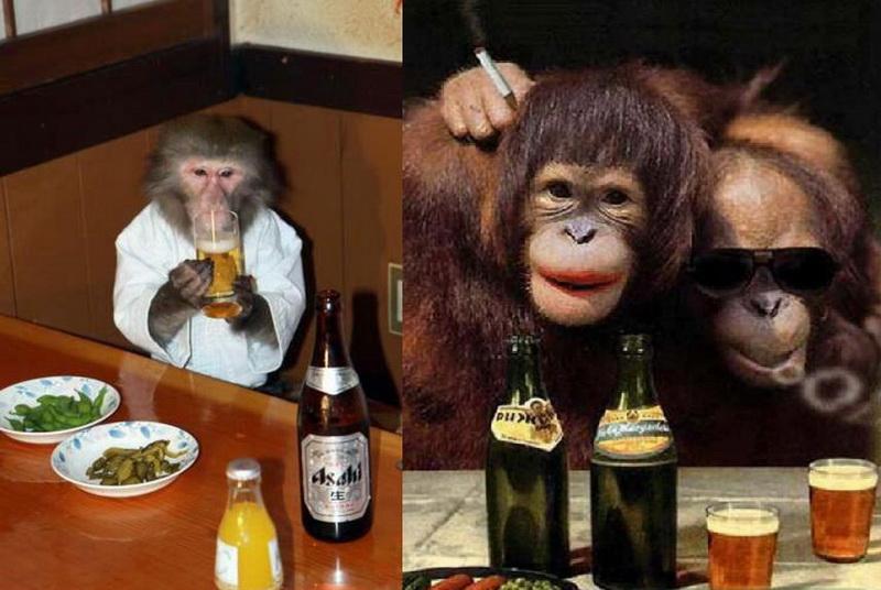 Прикольные про, прикольные картинки на телефон пьяные