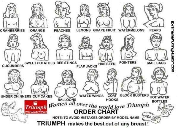 картинки женский половой орган