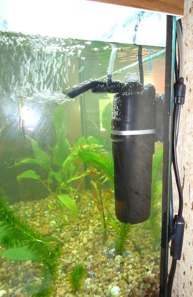 как правильно поставить в аквариум компрессор фото готовить