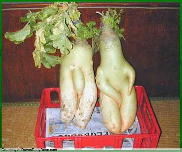 эротические овощи и фрукты фото-чл1