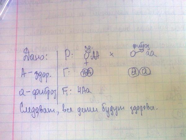 Решение задач по биологии генетика ответы задачи на ндс и ндфл с решением