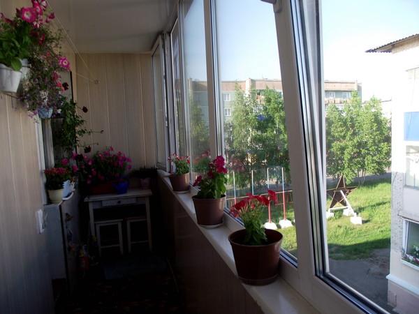 Ответы@mail.ru: цветы на балконе.