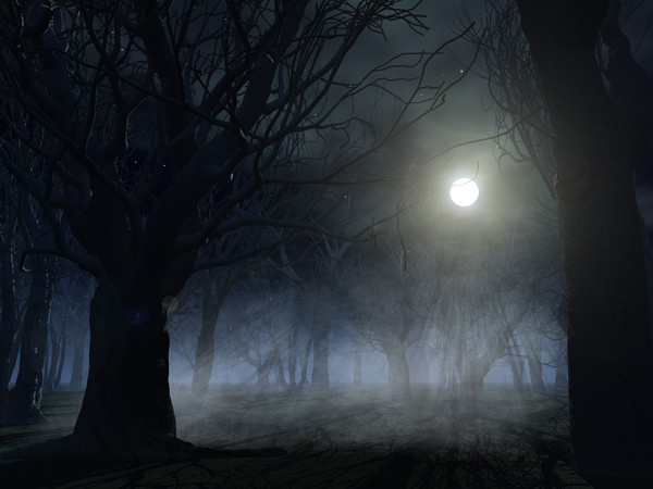 essay on moonlit night A beautiful moonlit night essay posted on february 13, 2018 by writing my essay makes me realize how grateful i am for my parents.