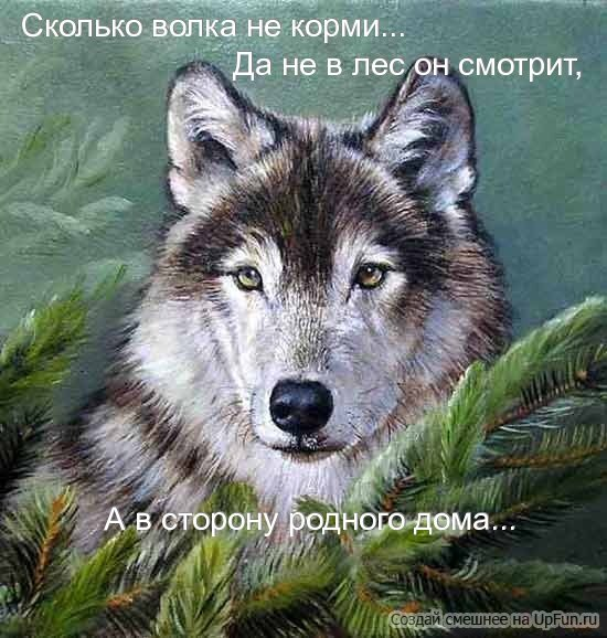 https://otvet.imgsmail.ru/download/a643b37b71820f507f49d7d26cb4d8cf_i-3284.jpg