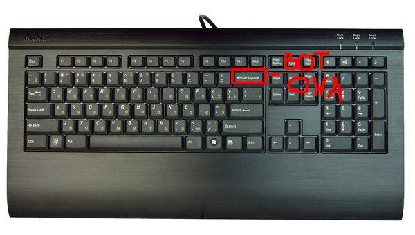 warf computer