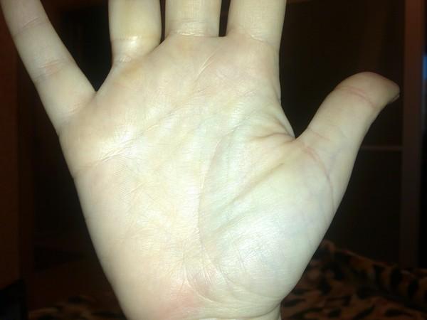 предсказания по руке фото счет желатина составе