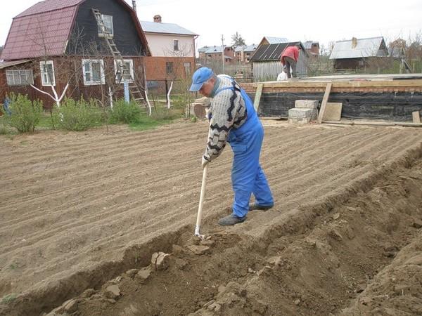 земляные работы вокруг дачного дома в минске Сергей