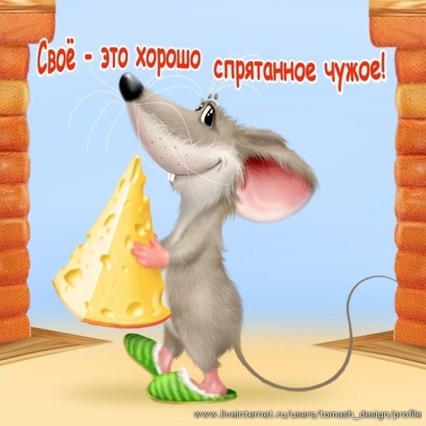 Днем, мышка доброе утро картинки смешные