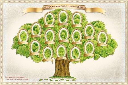 Родословное дерево семьи нарисовать
