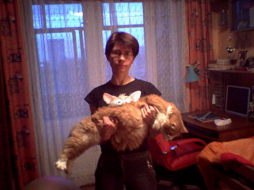 Чем кормить кота чтобы он стал толстым