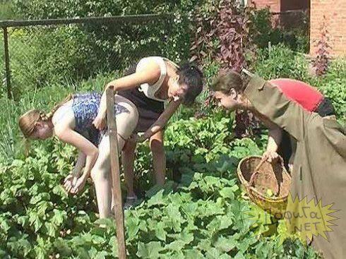 Секс в огороде с бабой — img 4