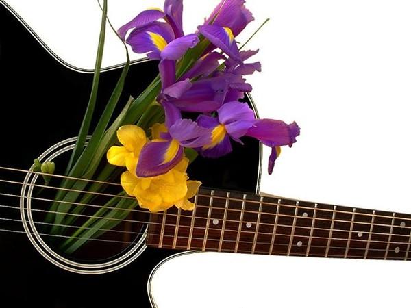 Открытки с цветами и гитарой, анимации