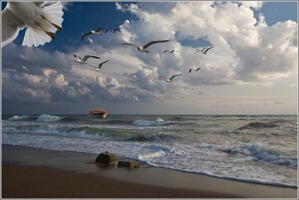 ветер на море фото