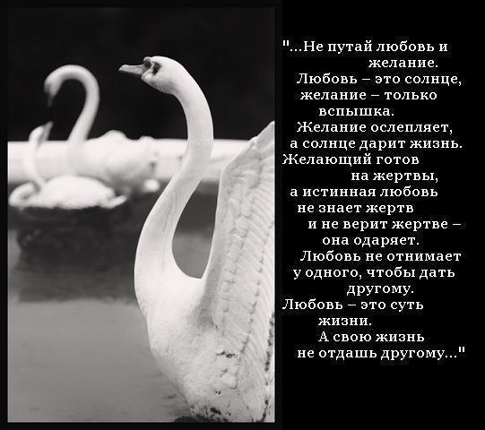 не путай любовь желание