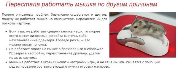 газ комп включается от мыши белорусском Полесье Кудесница