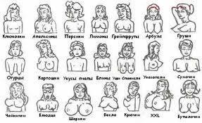 Фото типы женской груди фото 35-573