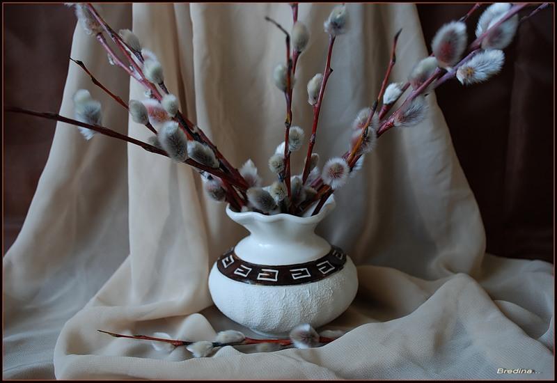 картинки ветка вербы в вазе беру