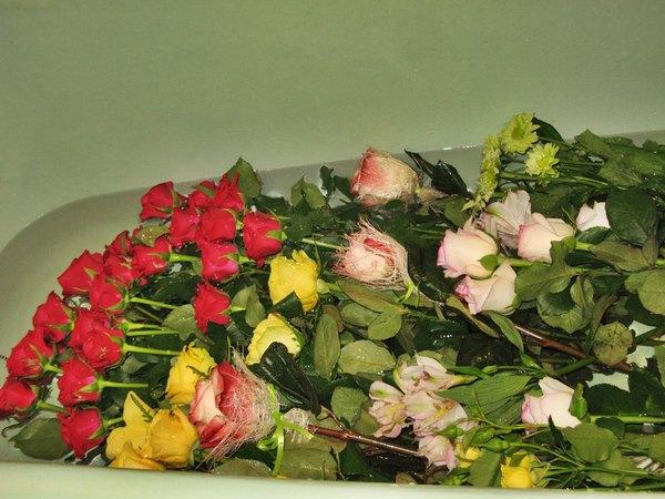 Букет роз в ванной, цветов молодогвардейская